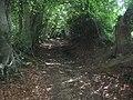 Bridleway to Green Lane Farm - geograph.org.uk - 1450327.jpg
