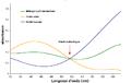 Bromocresol green spectrum-fr.png