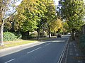 Brooklands Avenue - geograph.org.uk - 1079335.jpg
