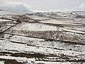 Byerhope valley (2) - geograph.org.uk - 752528.jpg