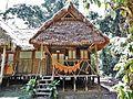 Cabaña en Chalalan Albergue Ecológico.jpg