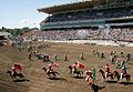 Calgary Stampede Rodeo final day 17 - 2011.jpg