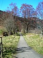 Callander to Strathyre Cycle Route - geograph.org.uk - 390553.jpg