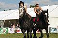 Carroussel à 16 chevaux montés Mondial du percheron 2011 Cl J Weber07 (23975385652).jpg