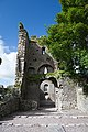 Castlelyons Friary View through the Tower 2015 08 27.jpg