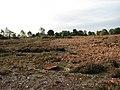 Cawston Heath rifle range - geograph.org.uk - 1018447.jpg