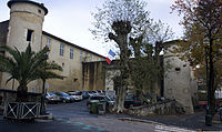 Château Vieux-Entrée.jpg