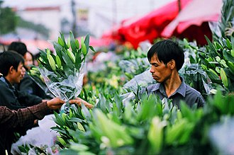 Cut flowers - A flower market in Vietnam
