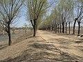 Changping, Beijing, China - panoramio (34).jpg