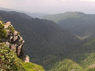 Charlies Bunion - The view looking northeast from Charlies Bunion, with the Porters Creek Valley below