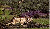 Chateau d'ALANÇON.jpg