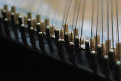 A close-up of a Kyiv-style bandura's tuning pins.
