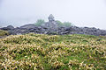 Chochomiyama Yashimagahara Wetland03s3.jpg