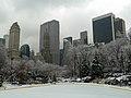 Christmas @ Central Park (11654422605).jpg