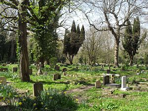 Church in the Wood, Hollington - The church has a large, secluded graveyard.