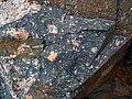 Clast-rich impact pseudotachylite (Sudbury Breccia, Paleoproterozoic, 1.85 Ga; Windy Lake Northwest roadcut, Sudbury Impact Structure, Ontario, Canada) 55 (47705529192).jpg