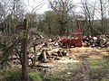Clearing trees, Hill Farm, Beausale - geograph.org.uk - 1769563.jpg