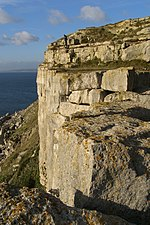 Cliffs above mutton cove portland dorset.jpg