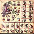 Codex Borbonicus (p. 17).jpg