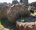 Columnes ensorrades del temple de Zeus, Olímpia.JPG