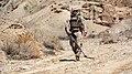 Combat Sweep (21163306384).jpg