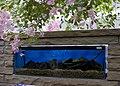 Conservatory fish tank, Hull - geograph.org.uk - 1880002.jpg