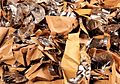 Contaminated paper.jpg