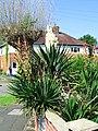 Corby, UK - panoramio (28).jpg