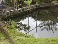 Costa Rica (6110339306).jpg