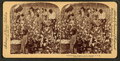 Cotton is king - A plantation scene, Georgia, from Robert N. Dennis collection of stereoscopic views 2.png
