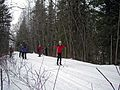 Cross-country skiing (11821514456).jpg