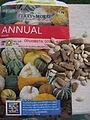 Cucurbita pepo var ovifera-seeds and fruits-Olinda.jpg