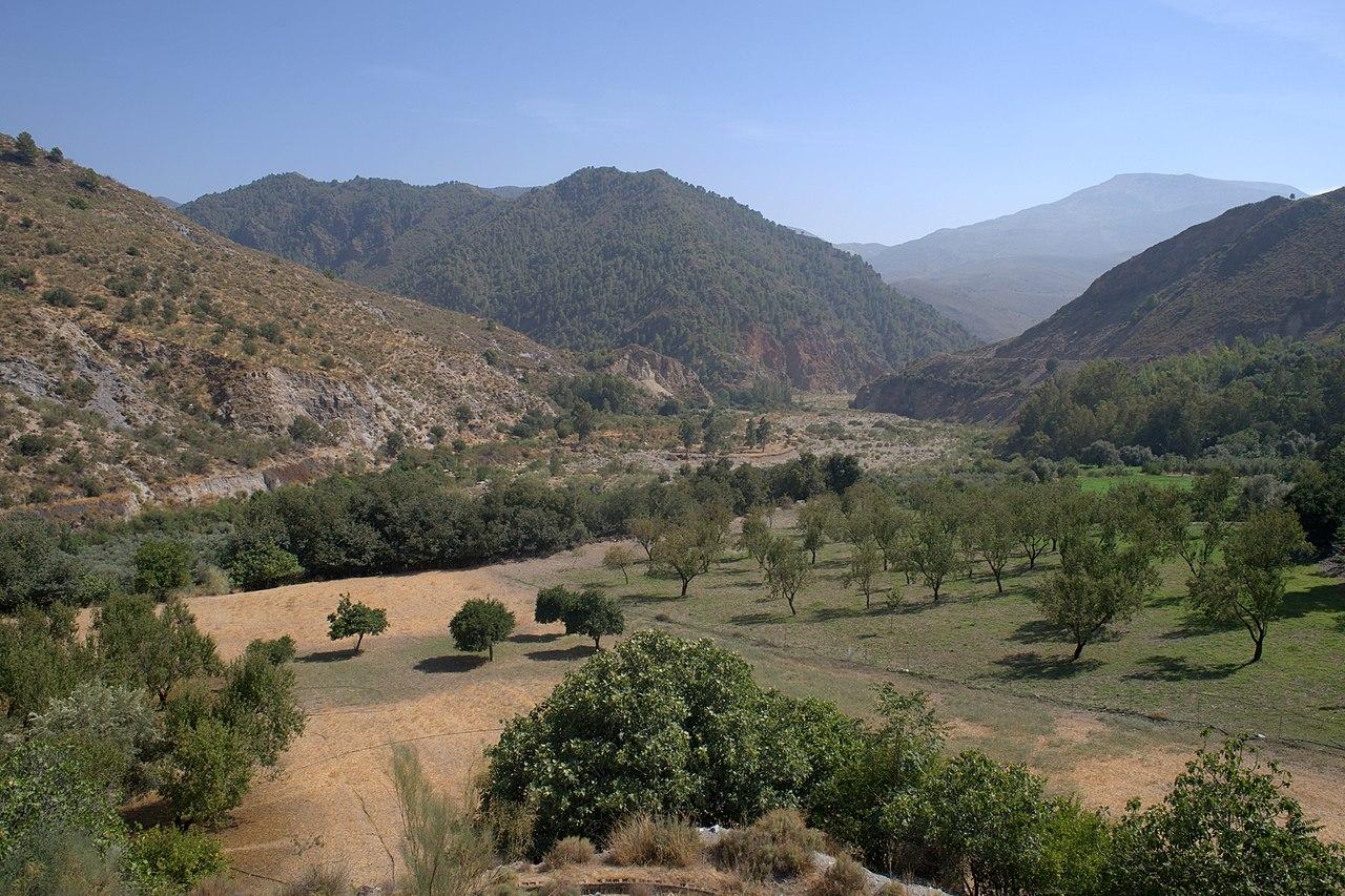 File Cultivos En Terrazas Del Rio Guadalfeo Orgiva Granada