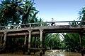 Cycling across a bridge over the Mekong.jpg