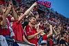 Czech fans, Czech Rp.-Montenegro EURO 2020 QR 10-06-2019 (3).jpg