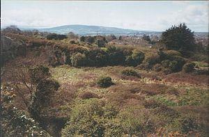 Dalkey Hill - Dalkey Hill