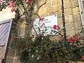 Derek Garden Centre 15.jpg