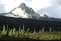 Deschutes National Forest Mt. Washington (36904309446).jpg