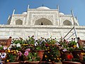 Detail of Taj Mahal - Agra - Uttar Pradesh - India - 04 (12650245735).jpg