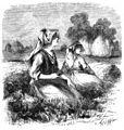 Die Gartenlaube (1859) b 609 1.jpg