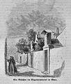 Die Gartenlaube (1863) b 413 1.jpg