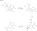 Diels-alder mechanism.png