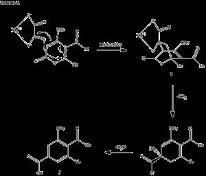 Macrophomic acid - Image: Diels alder mechanism