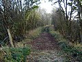 Disused Whithorn Railway Line - geograph.org.uk - 601877.jpg