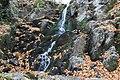 Dolina Borinske reke 09.jpg