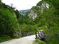 Dolina Draga.JPG