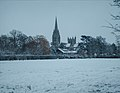 Downing College Paddock in snow - Feb 2009.JPG