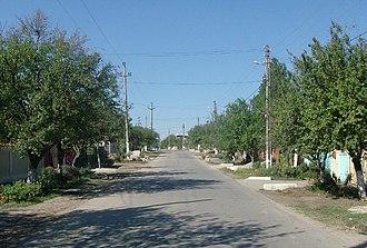 Ilfov County - Str. Micșunelelor, main street in Dragomirești-Vale, 2007