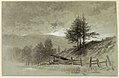 Drawing, Field with Rail Fence, 1877 (CH 18300433).jpg