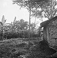 Drie militairen naderen voorzichtig een huis, Bestanddeelnr 15832.jpg